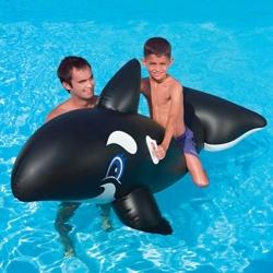 Baleine flottante